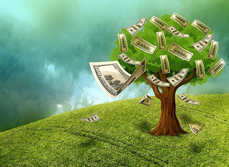 cash na stromě